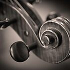 Violin Scroll 1 by stringdaydreams