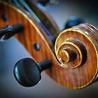 Violin Scroll 2 by stringdaydreams