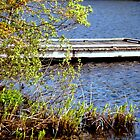 Dock on the lake ... by Choux