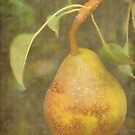 Pear in DAP Pastels with Texture by Robert Armendariz