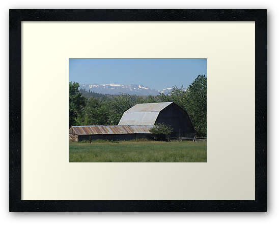 OH, THOSE ROADSIDE BARNS! by May Lattanzio