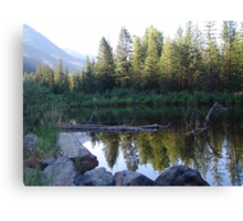 BEAVER POND ON THE BOULDER Canvas Print