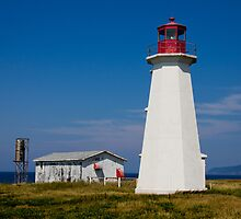 Enragée Point Light by michelsoucy