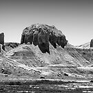 Utah Rocks VI by David Lamb