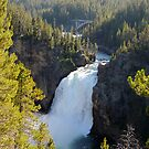 Upper Falls of Yellowstone by Rachel Meyer