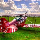 Pitts S-2B Special by TrueLoveOne
