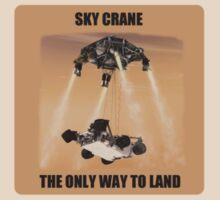 Sky Crane - The Only way to Land by wolfcat