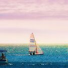 Sunset Sailing  by Elaine  Manley