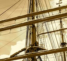 Barque Eagle Mast by skyhat
