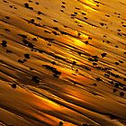 Golden Sands by Ellesscee