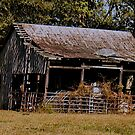 Old Timer's Barn (colored version) by © Bob Hall