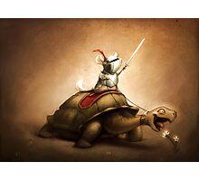 Knight of the Chinchilla Photographic Print