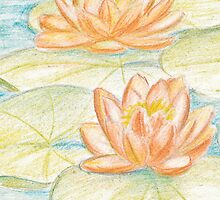 Water lilies by Ziarel