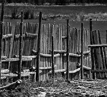 Old Fence by Mark Feliciano
