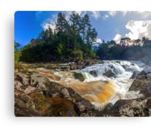 Mclaren Falls Canvas Print