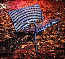 SEATTLE - Blue Bench in Rainy Fall by jsafford