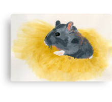 Thoughts of a Critter Canvas Print