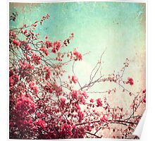 Pink Flowers on a Textured Blue Sky (Vintage Flower Photography) Poster