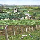Barossa Galahs by Ann Nightingale