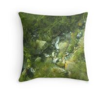 Underwater Vegetation 520 Throw Pillow