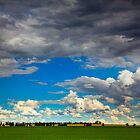 Clouds over Canola by alan shapiro