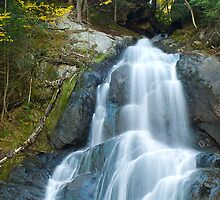 Moss Glen Falls by Susan R. Wacker