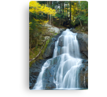 Moss Glen Falls Canvas Print