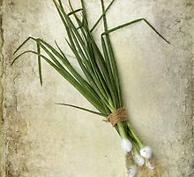 Spring Onions by Patricia Jacobs CPAGB LRPS BPE3