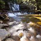Liffey Falls by Shelley Warbrooke