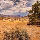 Grand Wash Cliffs by Dale Lockwood