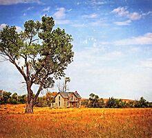 Limestone Farmhouse 9575a2 by Sharlotte Hughes