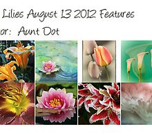 All Glorious Lilies Features Aug 13 2012 - Guest Curator Aunt Dot by Marilyn Cornwell