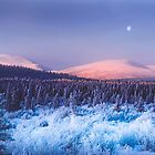 Sunrise on Fish Lake road by Yukondick