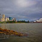 Sydney Rainbow by Adam Northam