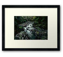 Fiordland National Park Framed Print