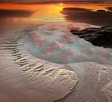 Godfreys Beach of Stanley, Tasmania.....by David Murphy by David Murphy