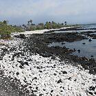 Hawaiian Sea Shore  by hrunbike