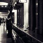 Grand Central by Briana McNair