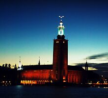 Stockholm in the night by Paul Sharudin