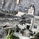 Château d'Amboise -- What the Gargoyle Saw. by Larry Davis