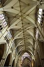 Ceilling of  Nave of Yorkminster by Yukondick