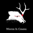 Winter Is Coming by JenSnow