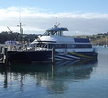 Passenger Boat at Sandspit by amypie71