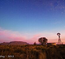 Twilight in the Karoo by Rob  Southey