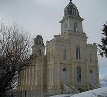Manti Temple by jeffreynelsd