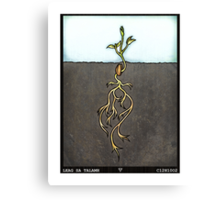 Leag Sa Talamh (Plant in the Earth) Canvas Print