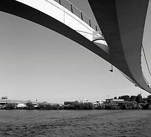 Two Bridges by M. van Oostrum