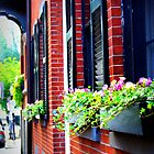 Flower Boxes, Boston by Amanda Vontobel Photography