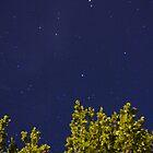 Perseid Meteor by Daniel Owens