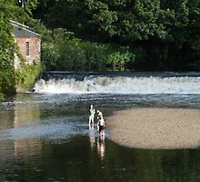 Fun in the water, Pollok Park, Glasgow, Scotland by ElsT